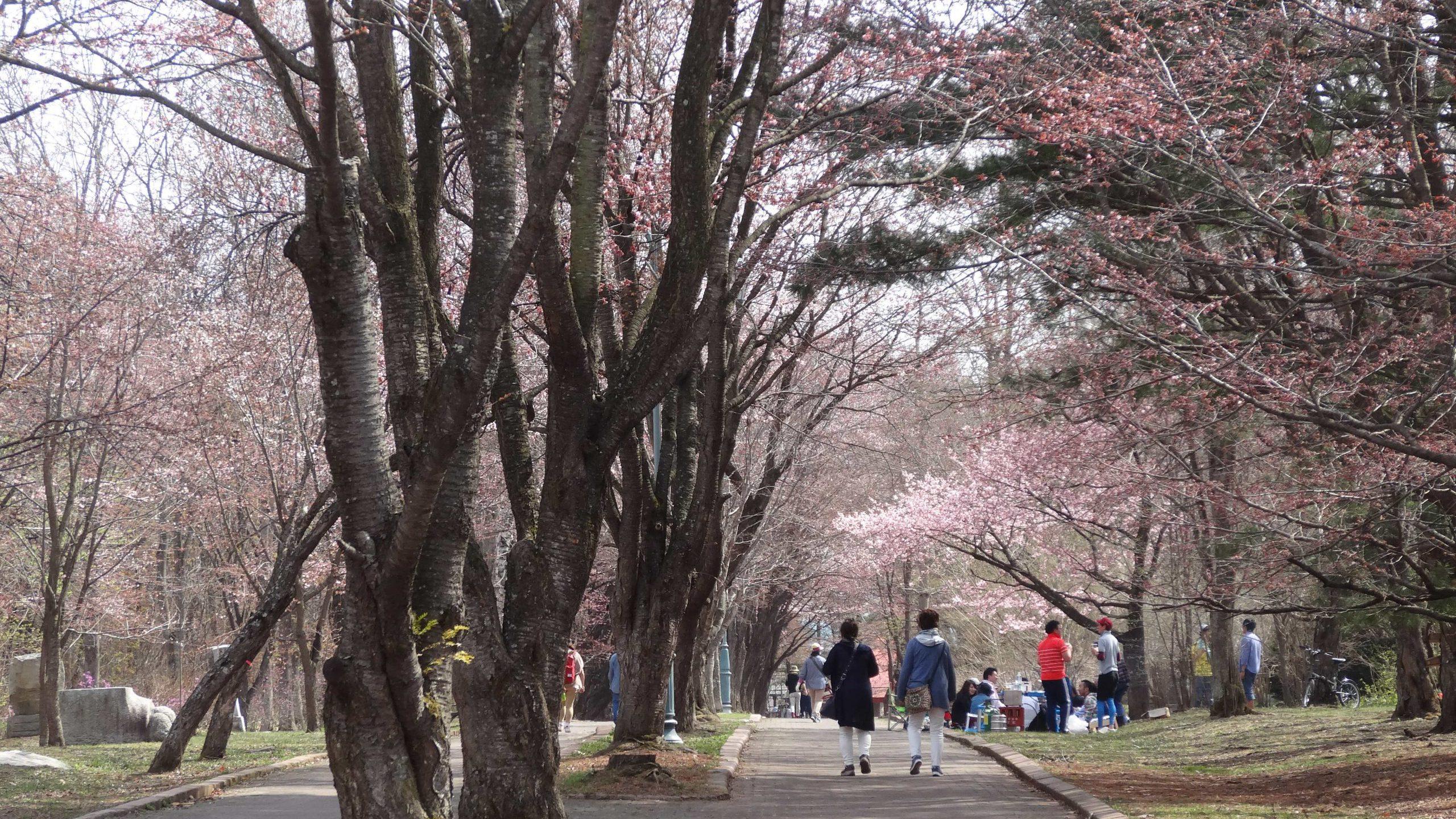 Obihiro Midorigaoka Park
